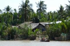 vietnam-1262787_1280 - Delta Mekong - Pixabay